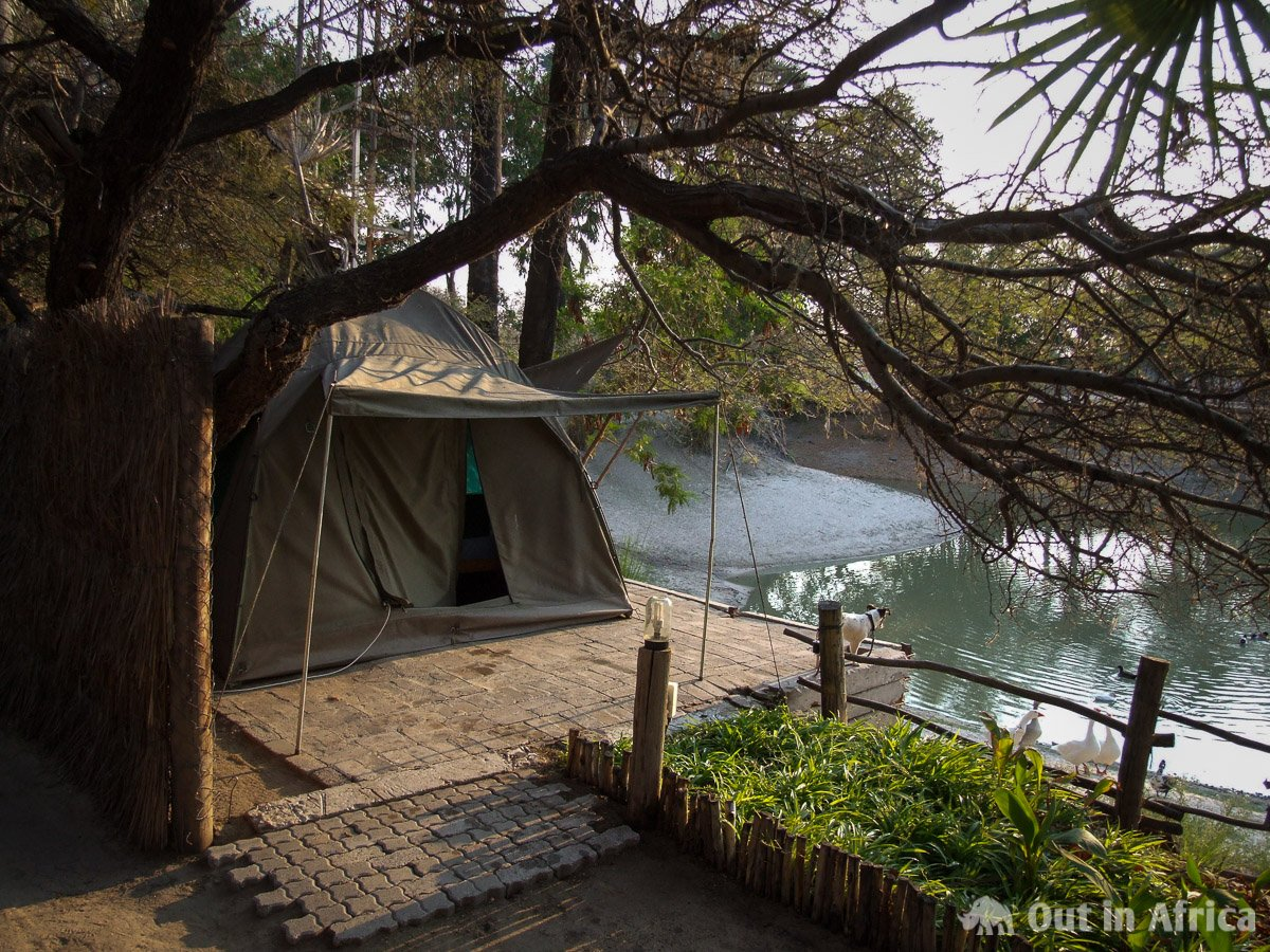 Zelt beim Ondangwa Tented Rest Camp