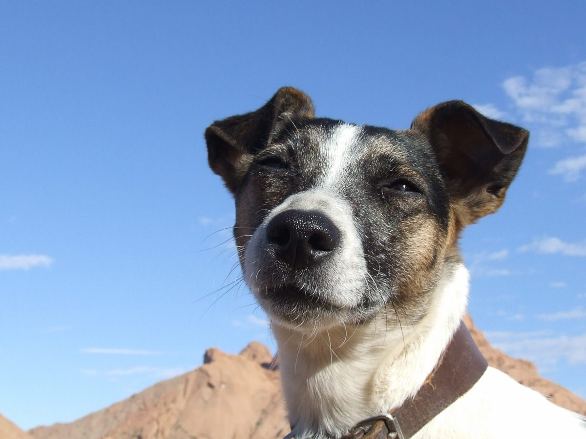 Penny an der Spitzkoppe
