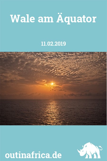 11.02.2019 - Wale am Äquator