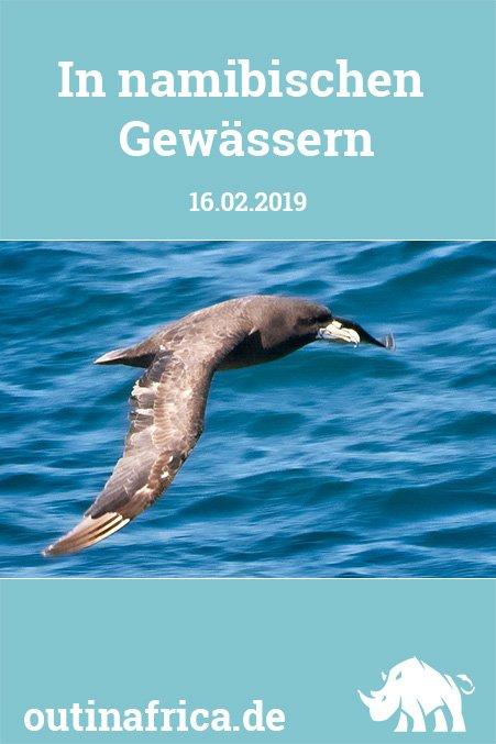 16.02.2019 - In namibischen Gewässern