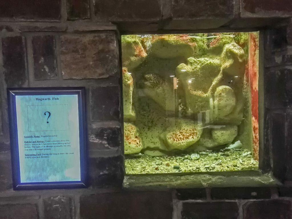 Hogwarts Fish