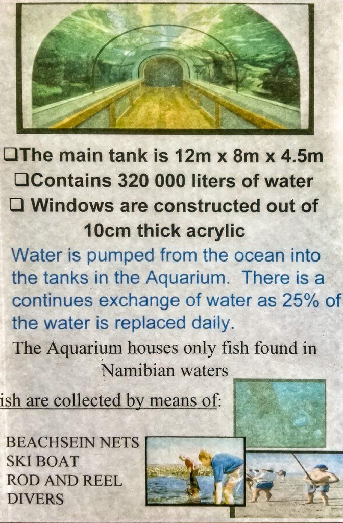 Information zum großen Aquariumsbecken