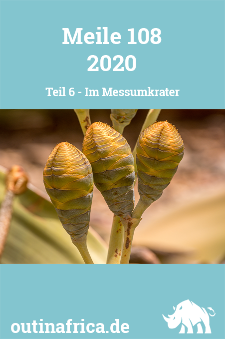 Meile 108 - Teil 6 - Messumkrater